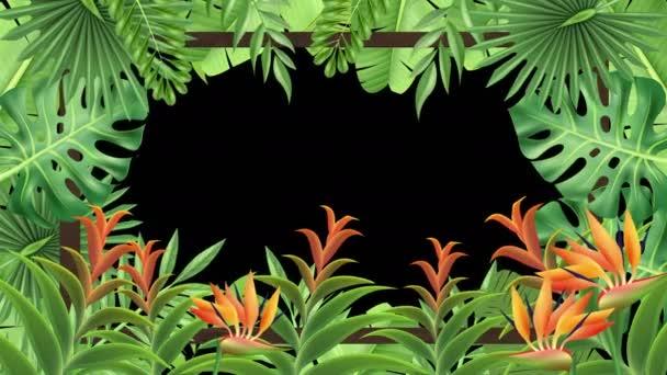 Trópusi növénykeret (Loop)