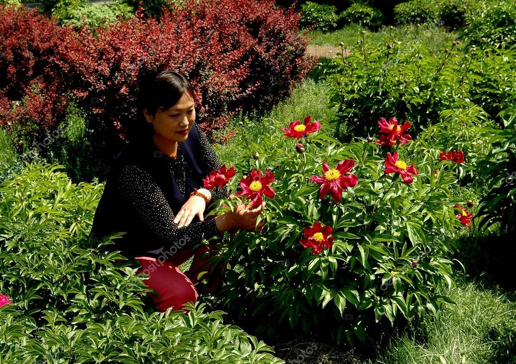 Beijing, China: Woman with Peonies