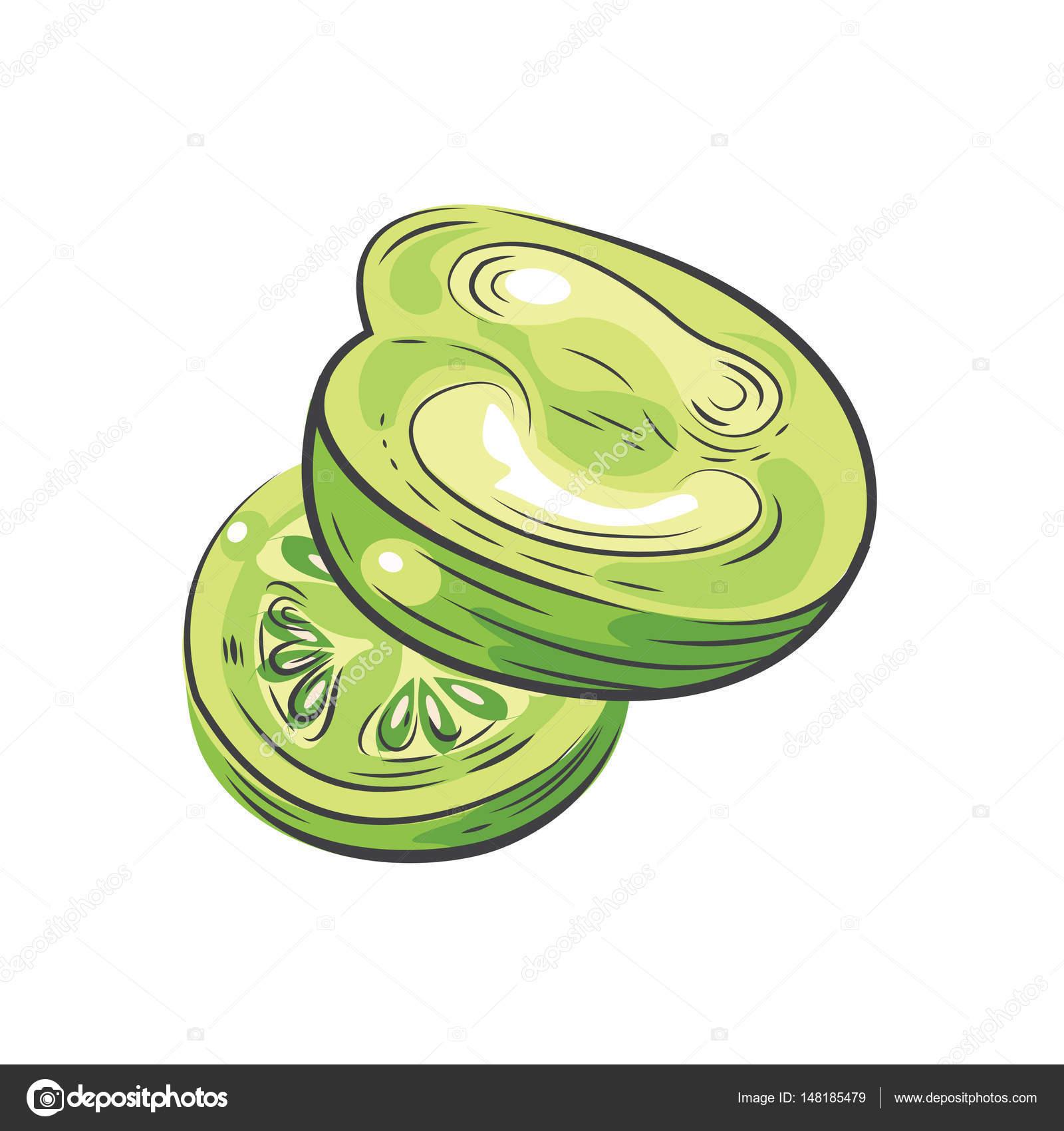 grüne Tomaten Vektor-Zeichenprogramm Design Aquarell — Stockvektor ...