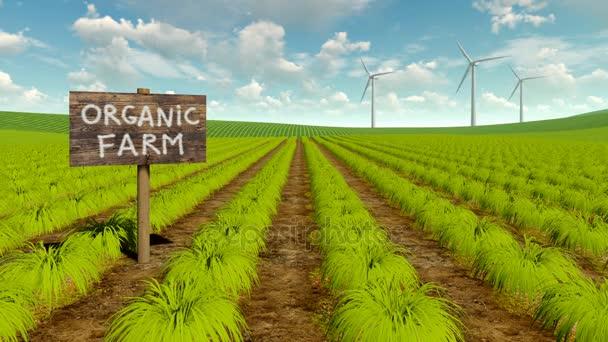 Organické ekologické zemědělství pole a větrné turbíny