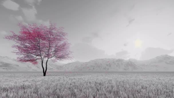 Sakura cherry strom v květu zpomalený černobílý 3d animace