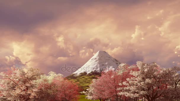Mt Fudžijama a cherry blossom při západu slunce nebo sunrise
