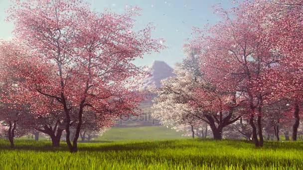 Fudži a stromy, Kvetoucí třešeň