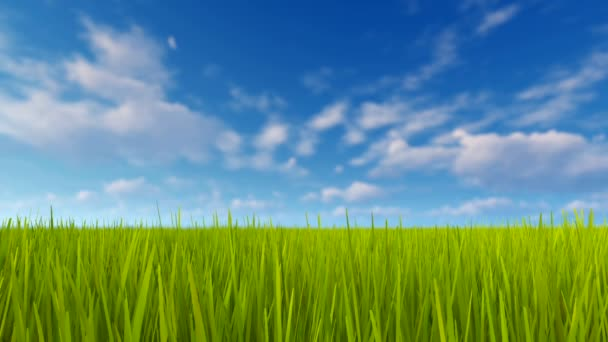 Green grass and blue sky with clouds