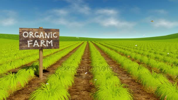 Přírodní ekologický zemědělství pole cinemagraph