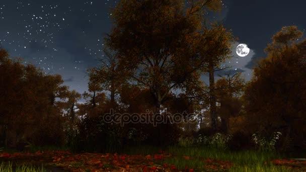 Kísérteties őszi erdő teljes Hold éjszaka 4k