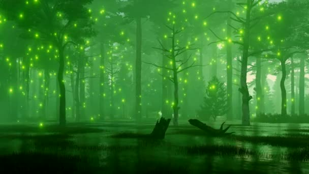Mesebeli erdős táj, a titokzatos mágikus firefly fény repül hátborzongató erdő mocsári, sötét, ködös éjszaka. Fantasy 3d animáció jelenik meg, a 4k