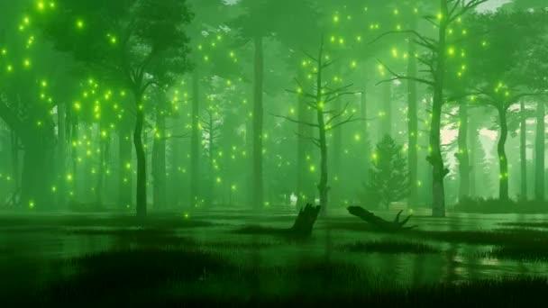 Snové lesní krajina s mystic firefly světly letící nad spooky swamp v lese temné tajemné noci. Fantazie 3d animace vykreslované v rozlišení 4k
