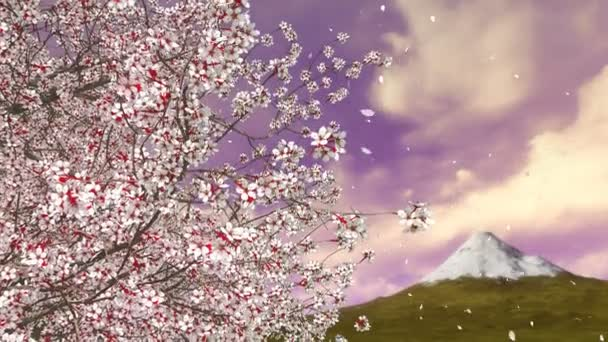 Detail sakura cherry strom v plné květů a květin lístky, které spadají v pomalém pohybu proti Mt Fudžijama a malebné sunrise obloze na pozadí. Jarní sezóna 3d animace vykreslované v rozlišení 4k
