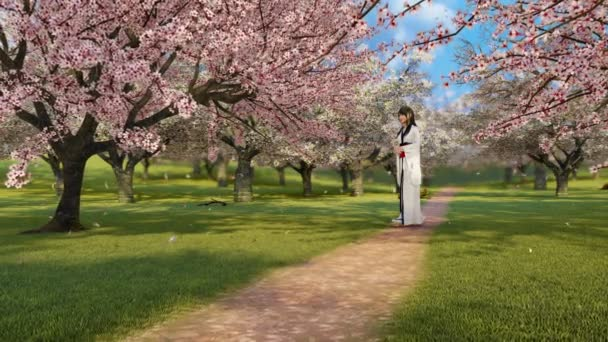 Japanese geisha girl in traditional kimono walking alone among blooming sakura trees in full blossom and cherry flower petals falling in slow motion at sunny spring day. 3D animation rendered in 4K