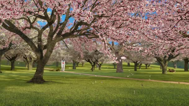 Asian girl in kimono walking alone through japanese garden with blooming sakura cherry trees in full blossom and flower petals falling in slow motion. Springtime season 3D animation rendered in 4K