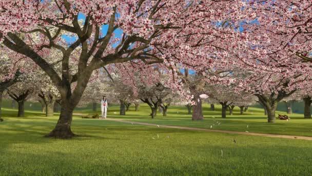 Asijská dívka v kimono procházky sám přes japonskou zahradu s kvetoucí sakura třešně v plném květu a okvětní lístky padající ve zpomaleném filmu. Jarní sezóna 3D animace vykreslená ve 4k