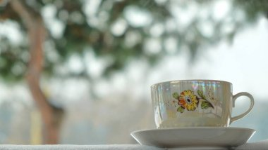 cup view window winter
