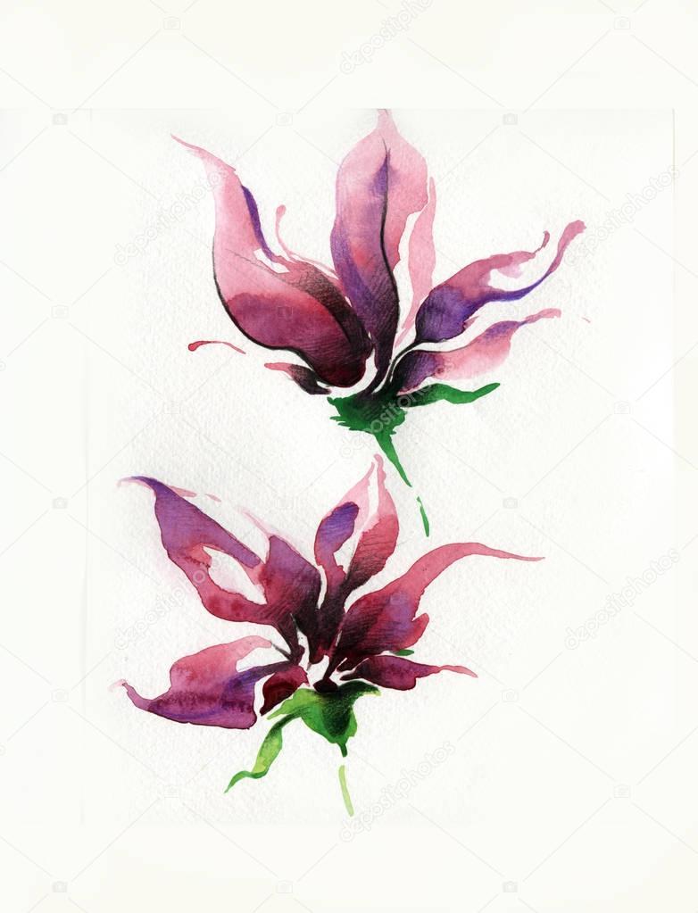 blume gezeichnet von pinsel bleistift und aquarell stockfoto licccka 128990754. Black Bedroom Furniture Sets. Home Design Ideas