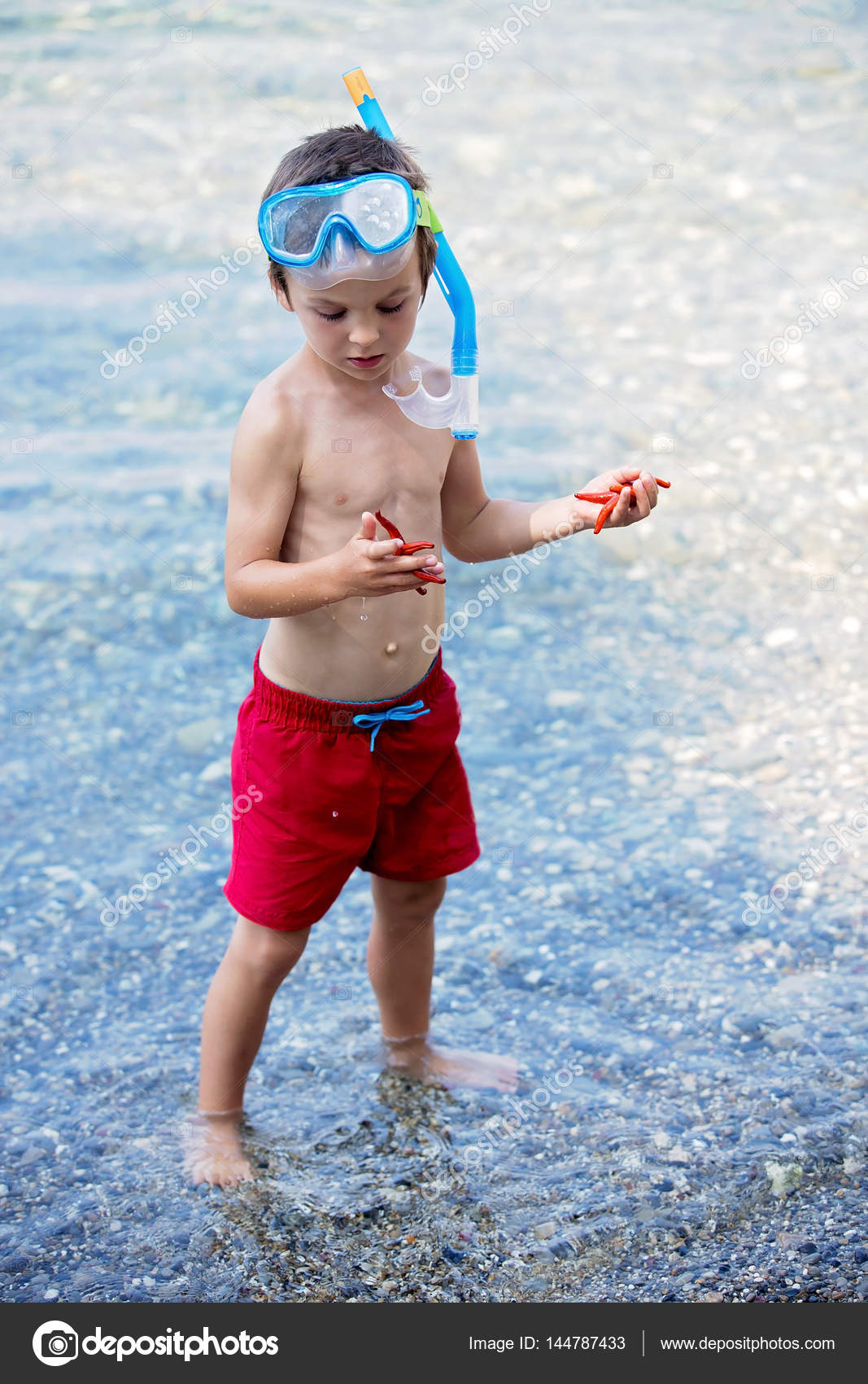 Little boy holding red five point starfish and net in his hands u2014 Stock Photo  sc 1 st  Depositphotos & Little boy holding red five point starfish and net in his hands ...