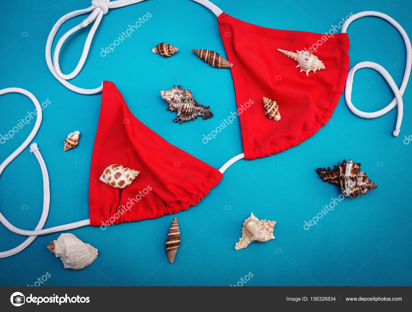 Costume Da Bagno Conchiglia : Estate abbigliamento e accessori costume da bagno e conchiglie