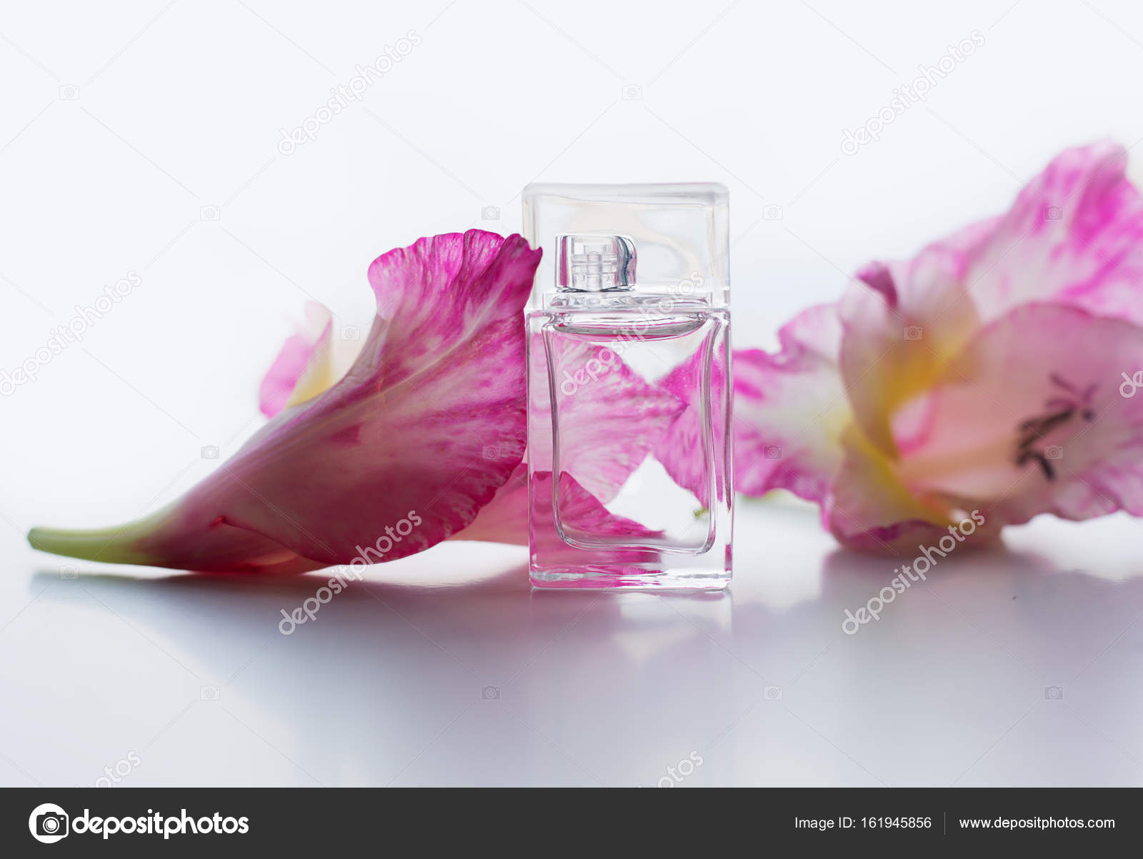 Perfume With Pink Flowers Stock Photo Martyna1802 161945856