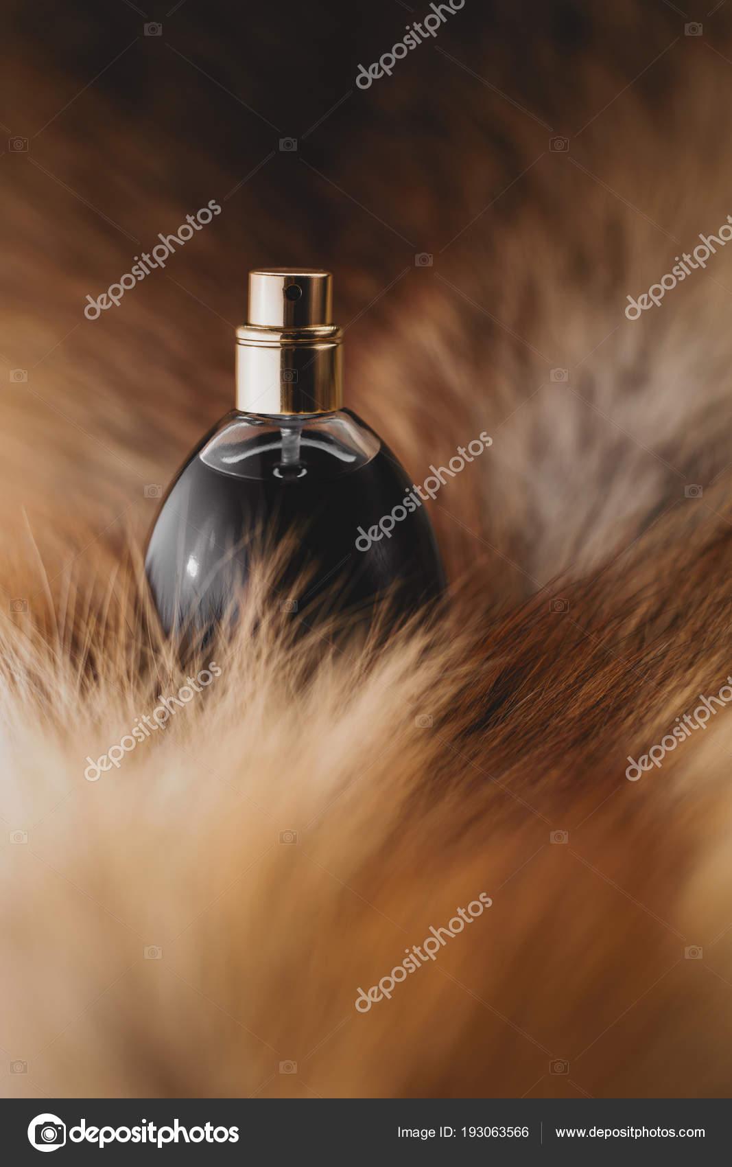 87e253b1973 Αρωματοποιία, καλλυντικά αρώματα — Φωτογραφία Αρχείου © Martyna1802 ...