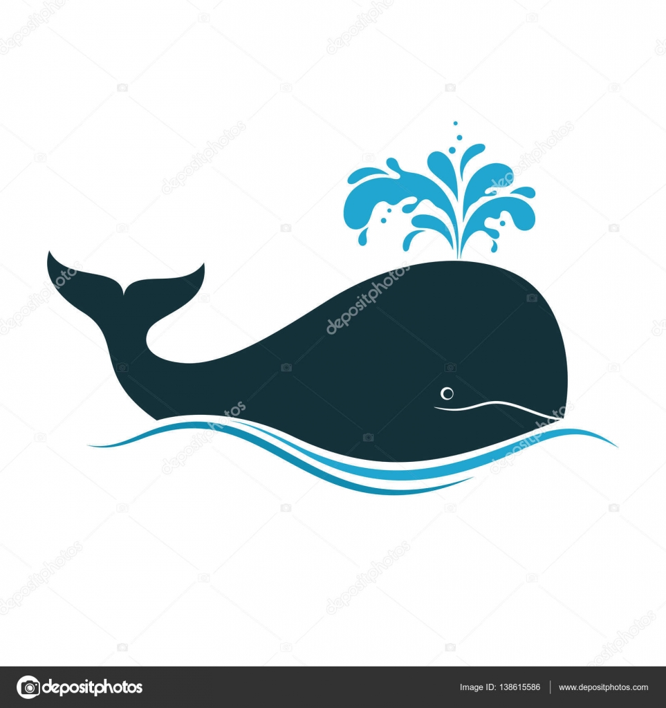 Whale Icon With Water Fountain Blow Vector By CatChat