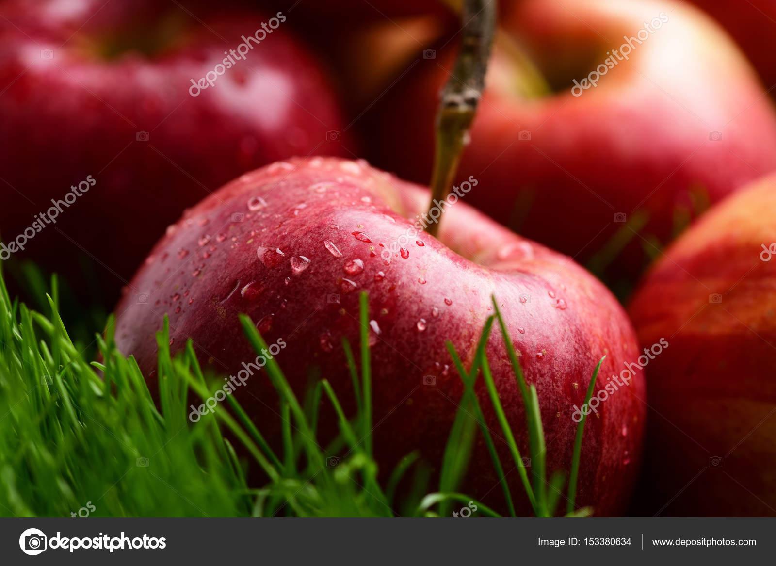 color rojo de la manzana caído sobre la hierba verde fresca — Foto ...