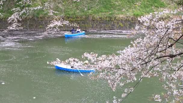 Tokió, Japán - április 8-án, 2016: Chidorigafuchi park tavaszi szezonban cseresznyevirág. ezen a területen is népszerű szempontból Cherry blossom vagy Sakura: Tokyo
