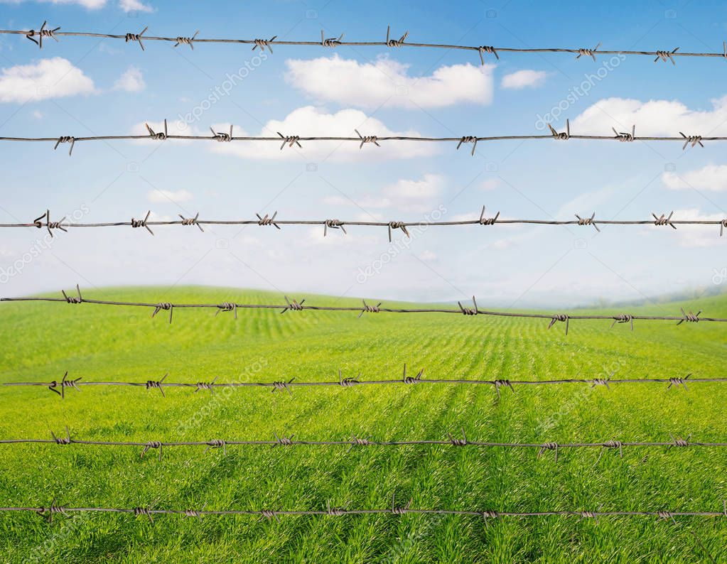 Barbed wire against field background