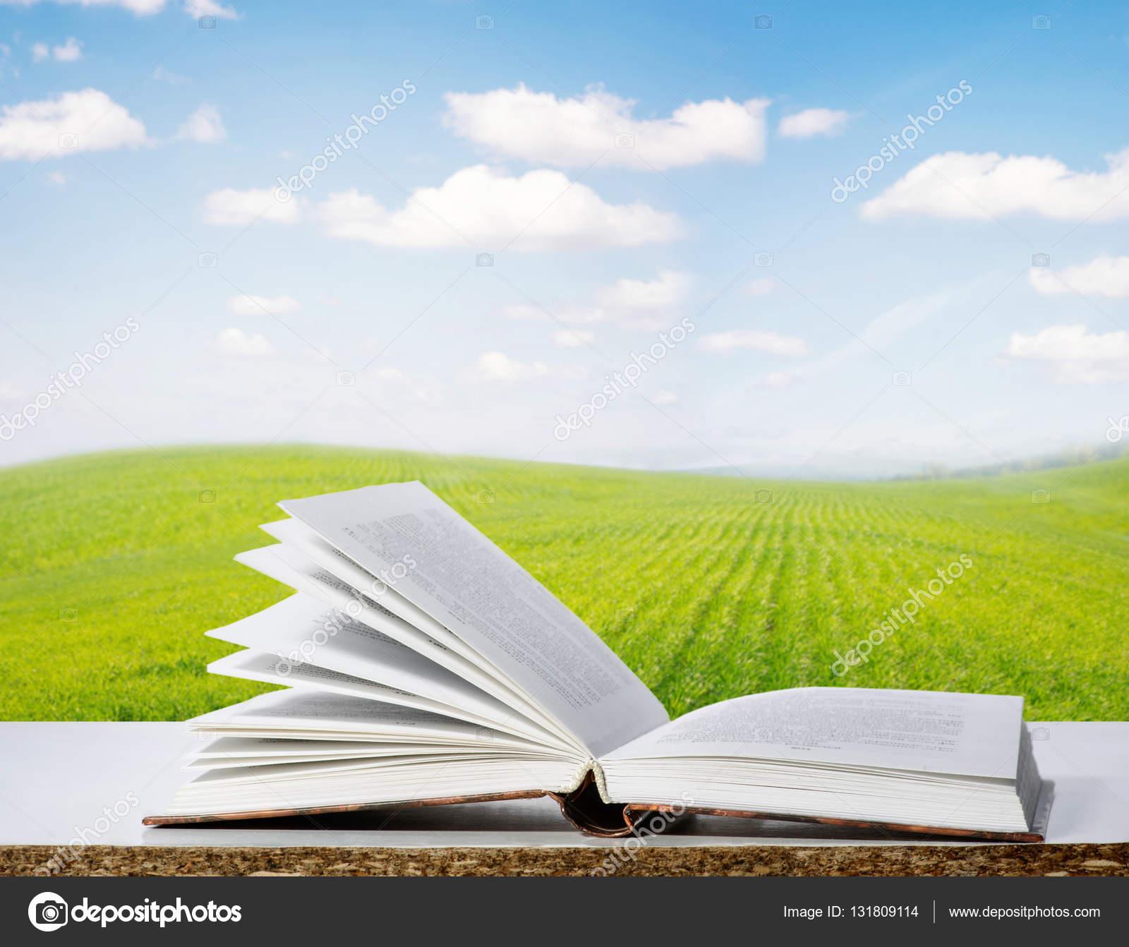 Imágenes Biblias Abiertas Con Paisajes Libro Abierto Contra El