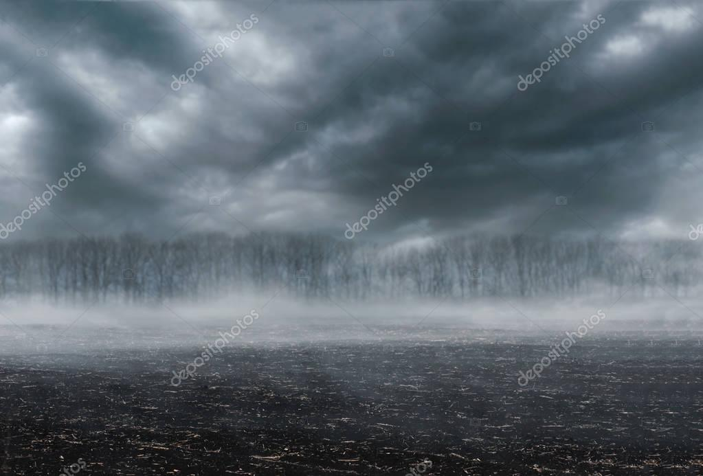 Gloomy landscape - scorched earth, fog and dark forest