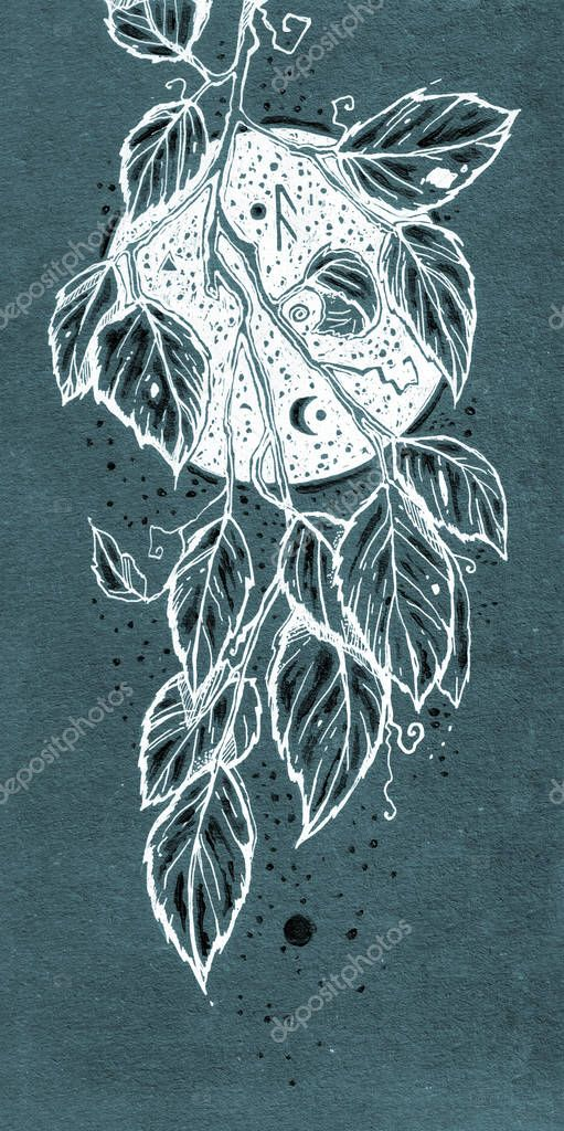 Beautiful drawn floral element. Graphic branch with leaves on a night sky background. It can be used for printing on t-shirts, postcards, desktop background, or used as ideas for tattoos.