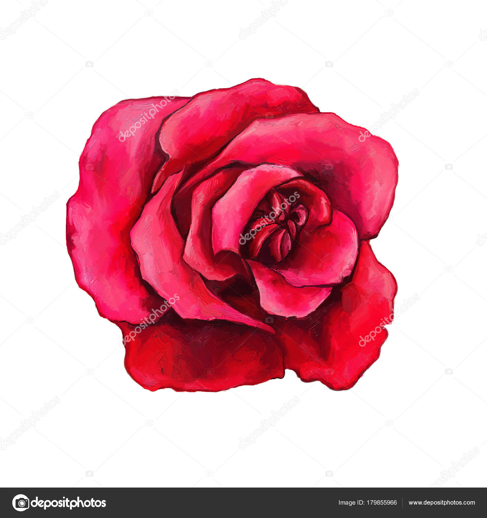 Beautiful red rose isolated white background oil painting style beautiful red rose isolated on a white background oil painting style gentle flower for your design can be used for tattoo photo by kicunei izmirmasajfo Choice Image
