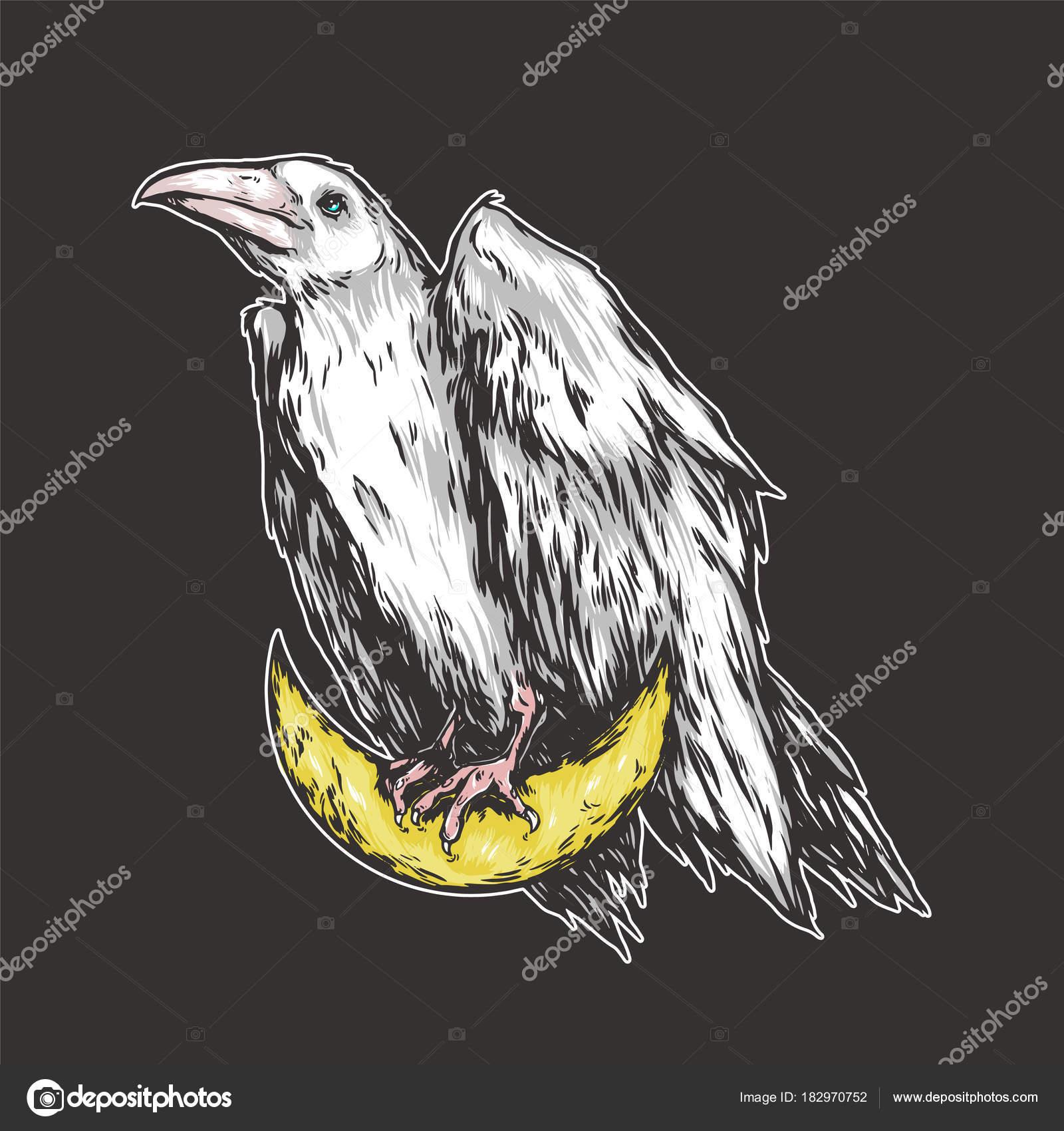 Biały Kruk Siedzący Księżycu Półksiężyc Crow Graficzny