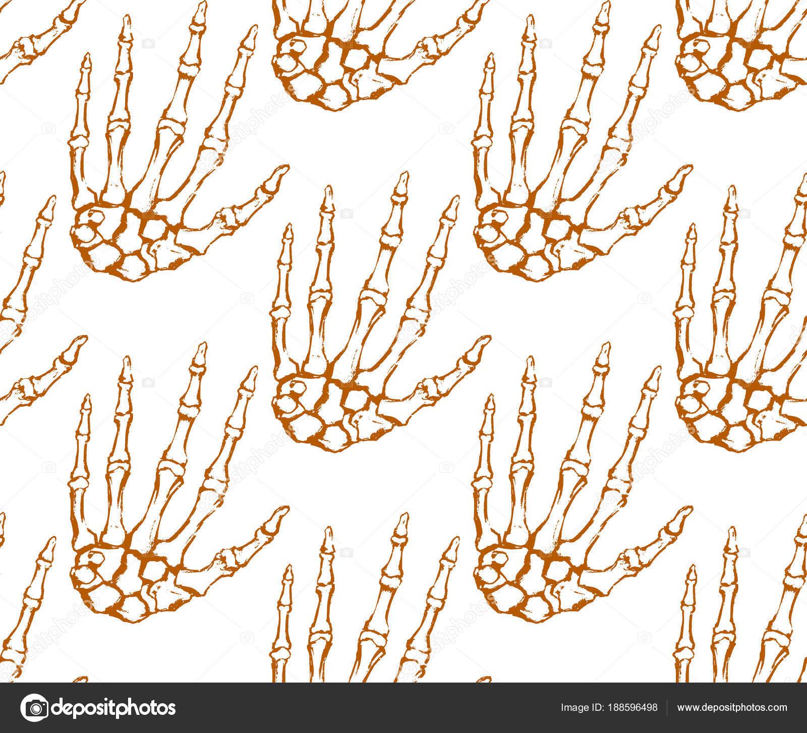 Nahtlose Textur Mit Menschlichen Skelett Hand Anatomische Zeichnung ...