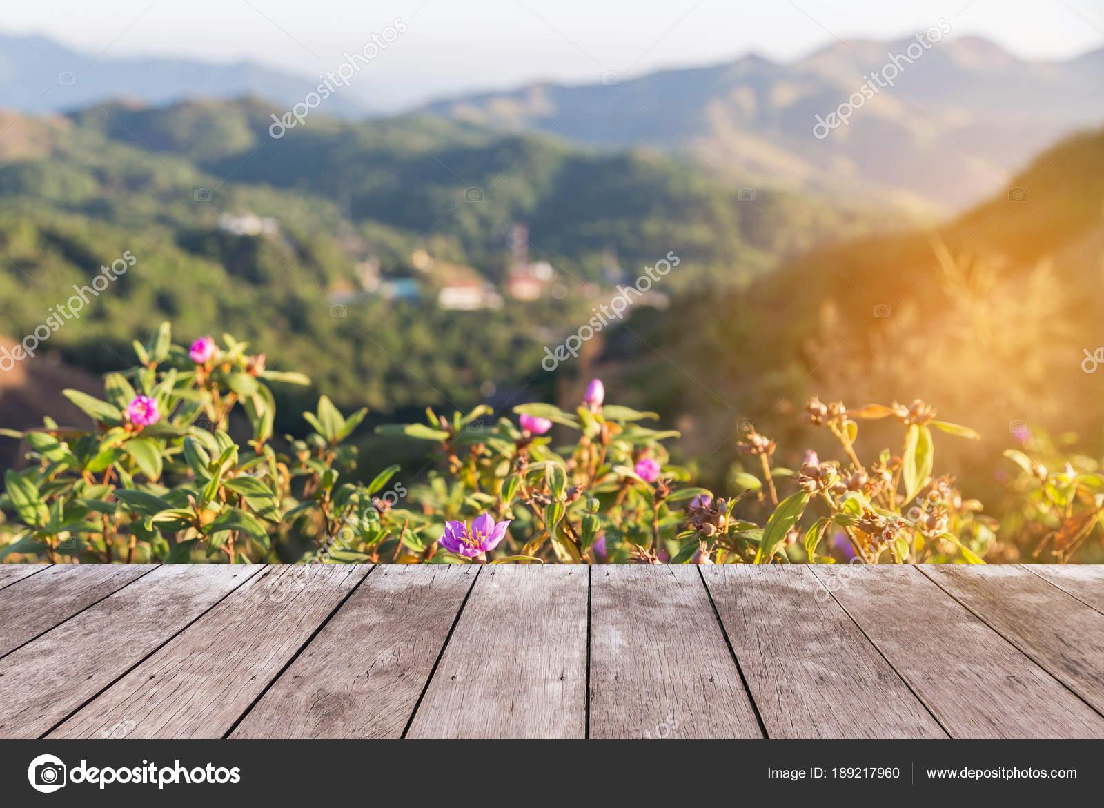 Leere Perspektive Alten Holzernen Balkon Terrasse Boden Auf Sicht
