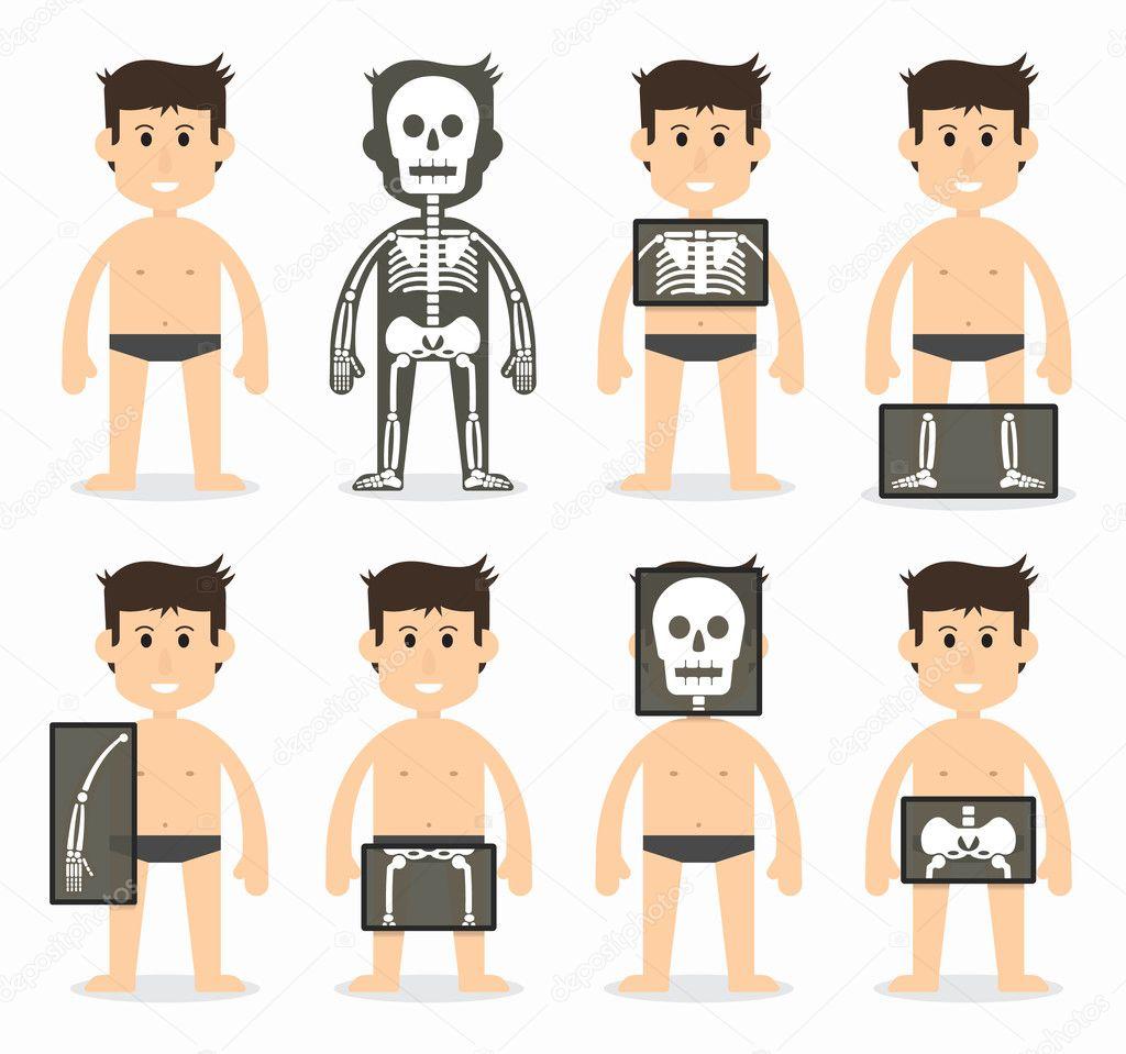 Diseño plano de huesos humanos y total exploración (cráneo, cuello ...