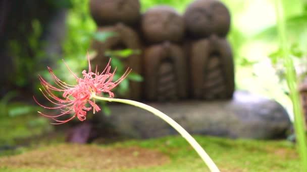 niedliche steinerne Mönchsstatue jizo-Statue (ksitigarbha) ist buddhistischer Hüter der Kinderseele im japanischen Glauben
