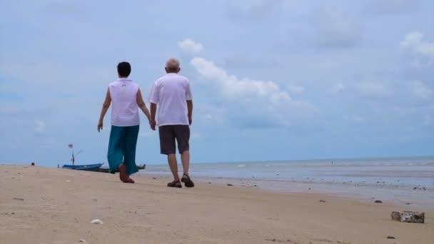 Asiatiche coppia senior felicemente camminando lungo la spiaggia. mano della holding e parlare con laltro
