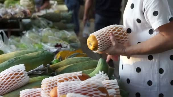 Asian woman picking and buying papaya in wet market of Thailand ⬇ Video by  © glowonconcept Stock Footage #135640912