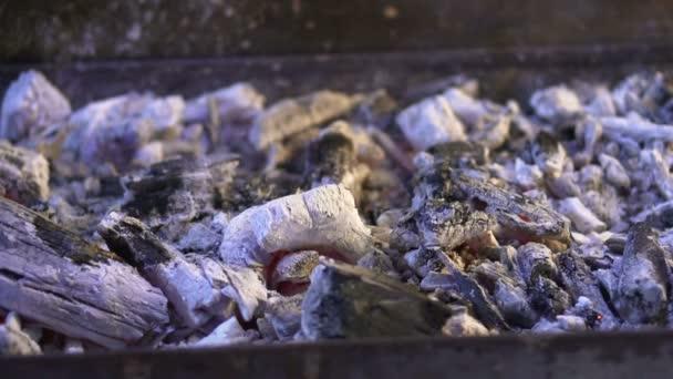 Zpomalený pohyb kouře ze spáleného uhlí popel po barbecue gril