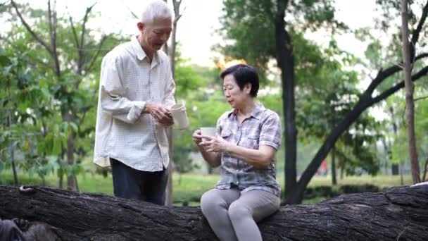 asian dating Senior