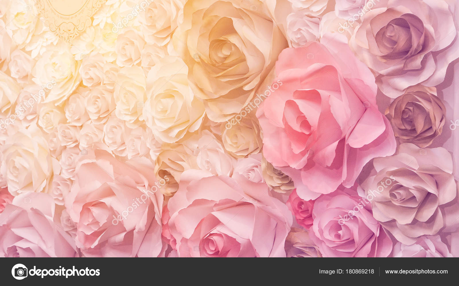 Roses Flower Wedding Pink Background With Copy Space Stock Photo
