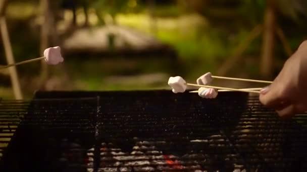 Ruční Grill Marshmallow po grilování, kempování 4k