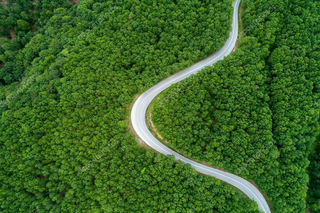 Aerial view of  provincial road passing through a forest
