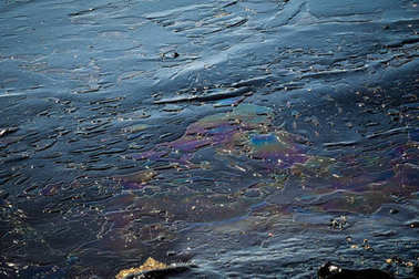 Oil, leaked from a sinked ship, come ashore in Salamina Island n