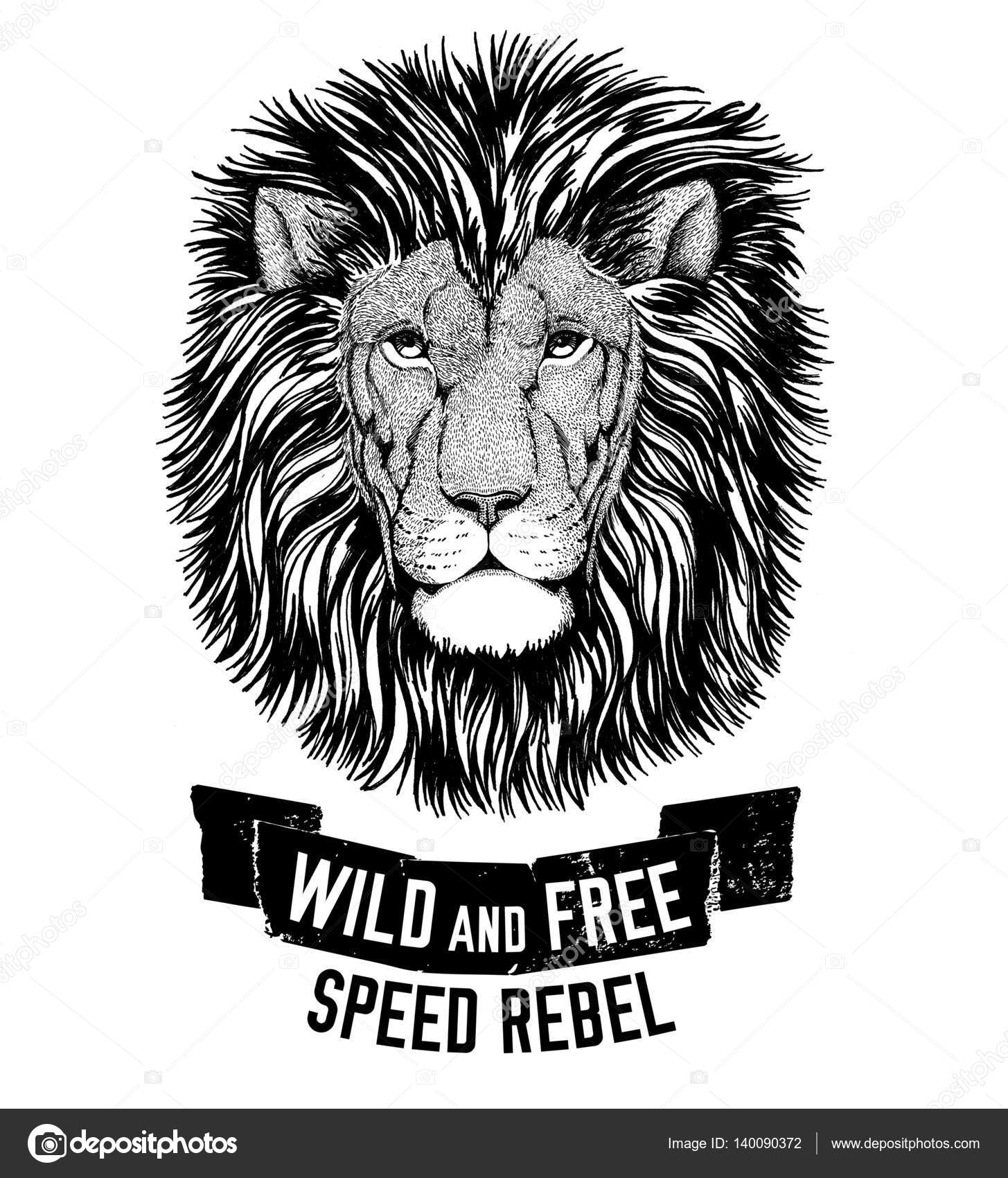 Free t-shirt design - Wild Tiger Wild Cat Be Wild And Free T Shirt Emblem Template Biker Motorcycle Design Hand Drawn Image Photo By Helen_f
