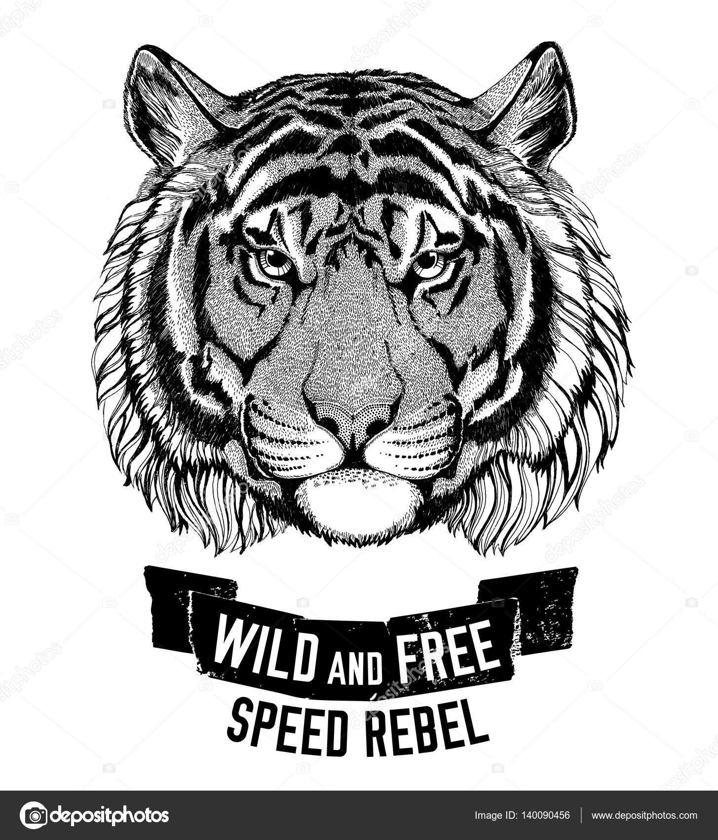 2bba4ce33dff Gato salvaje tigre salvaje ser salvaje y libre emblema camiseta