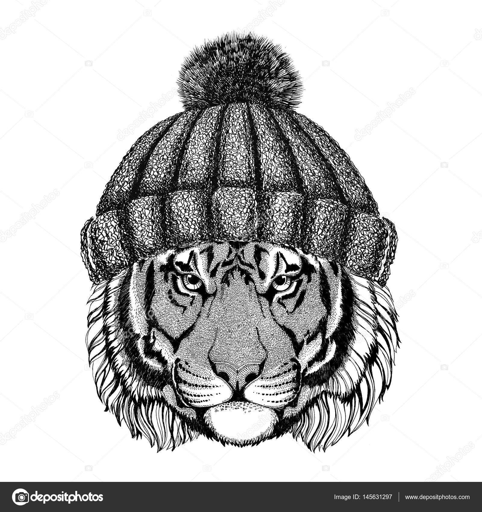Dziki Tygrys Na Sobie Sweter Hat Hipster Zwierzęta Ilustracja Logo