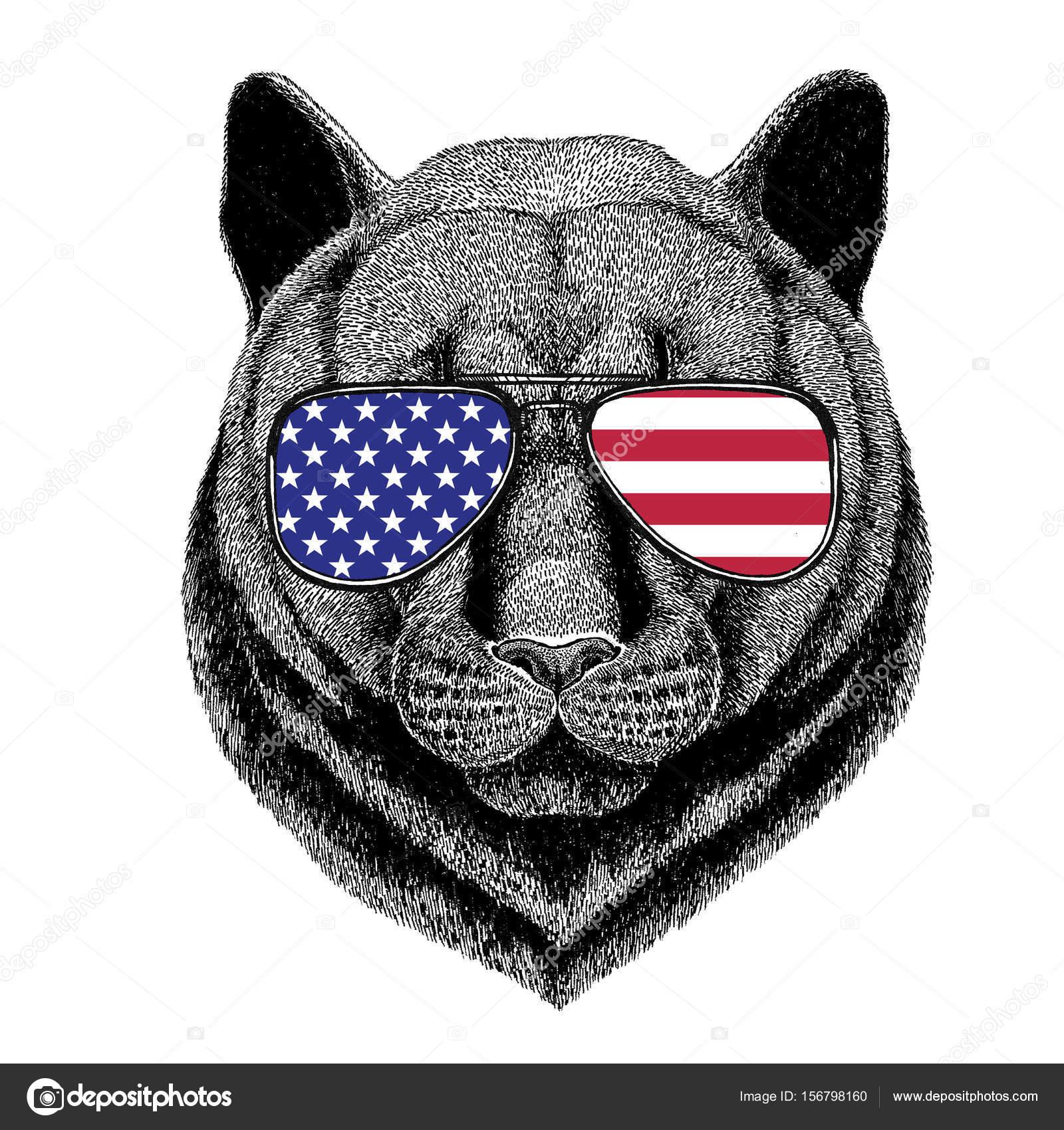 Panther Puma Dojrzałe Dziki Kot Ręcznie Rysowane Ilustracja Na