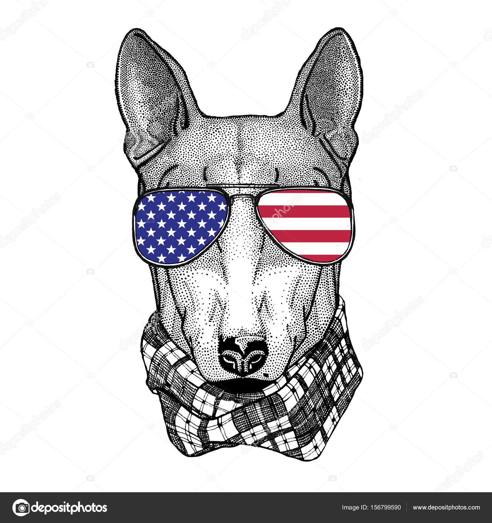 Pies Dla Projekt Koszulki Ilustracja Dla Tatuaż Emble Zdjęcie