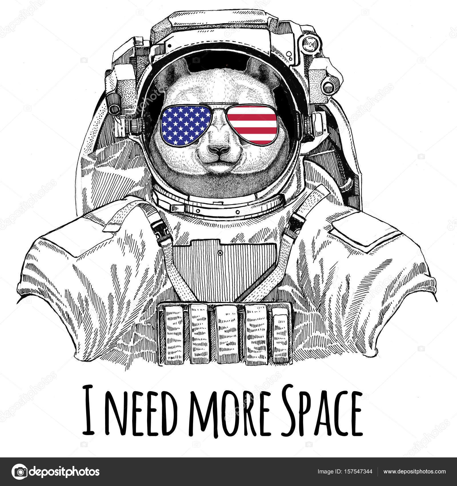 Usa gafas de bandera bandera americana Estados Unidos bandera oso ...
