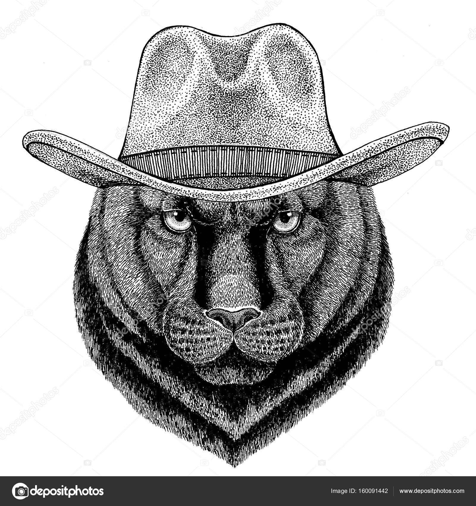 Panther Puma Cougar Wild Cat Wild Animal Wearing Cowboy Hat Wild